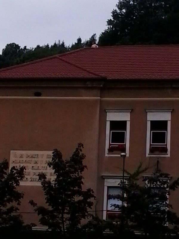 ola-19-avgust-2015-3